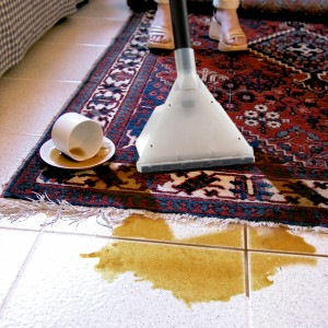 Carpet & Floor Cleaning Products